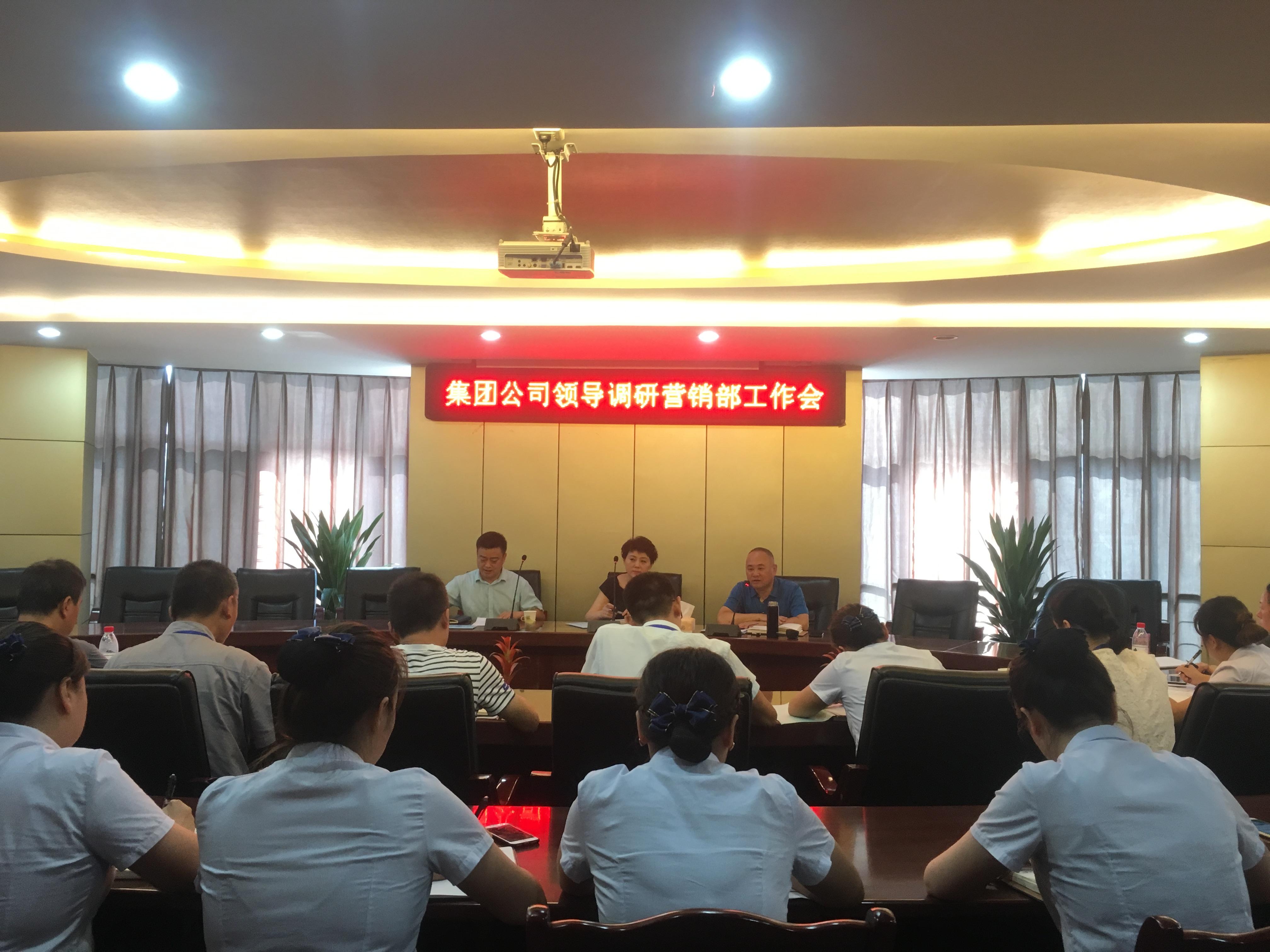 集团公司党委书记、董事长梁红率队深入营销一线开展调研
